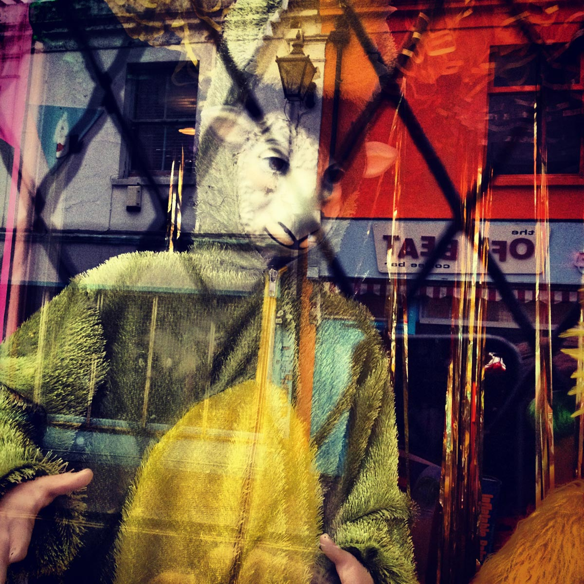Rondom shop window, North Lanes, Brighton