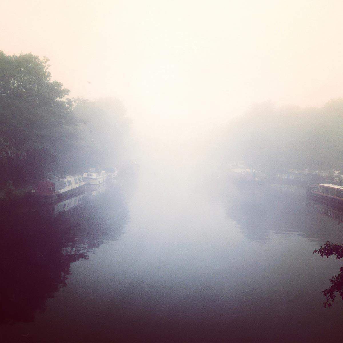 Misty canal, Springfield Park