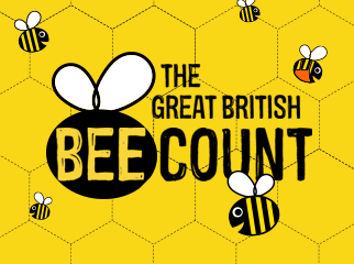 Friends of the Earth - The Great British Bee Count