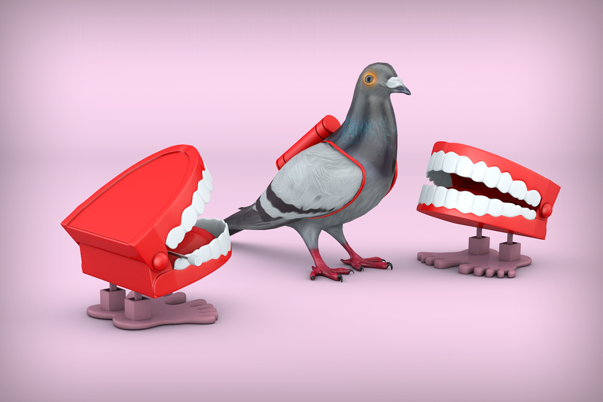 Virgin Media - Comms Central - Carrier Pigeon