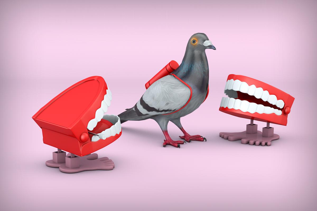 Virgin Media - Comms Central - Carrier Pigeon